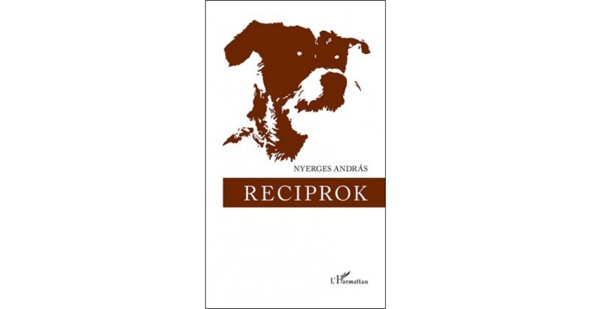Reciprok_Könyv Guru