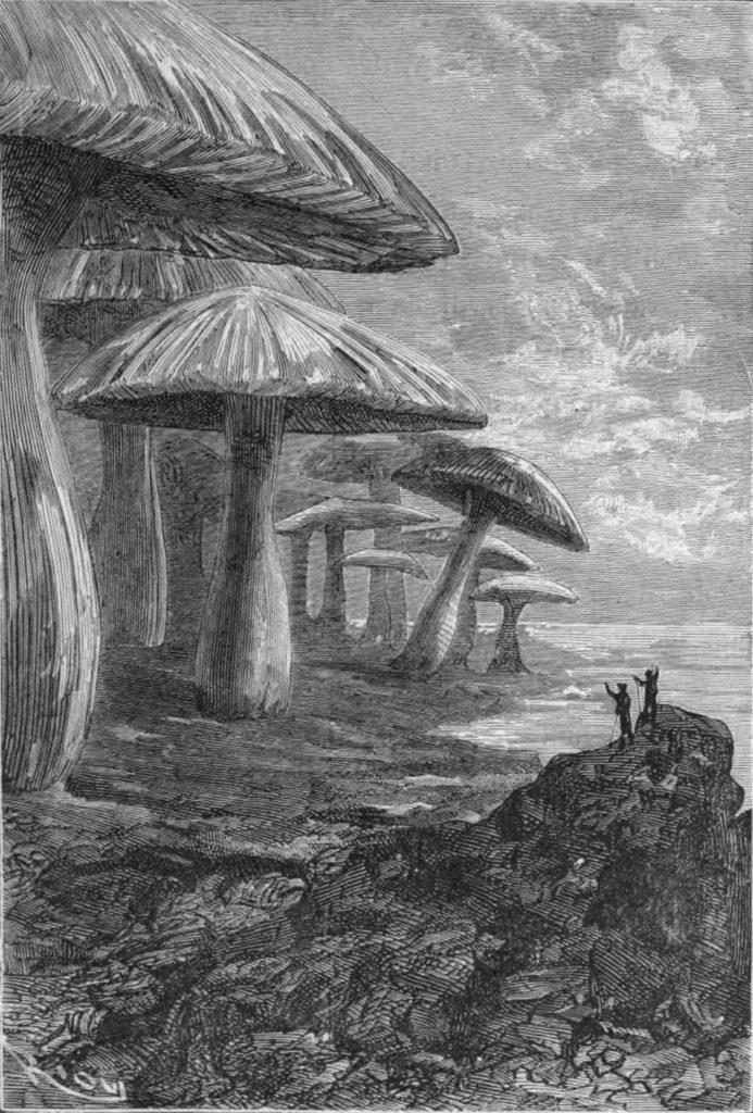 Verne: Utazás a Föld középpontja felé, az eredeti borító képe (forrás: wikipédia)